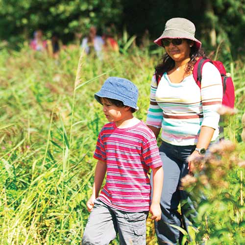 Mother and son walking amongst tall reeds and flowers