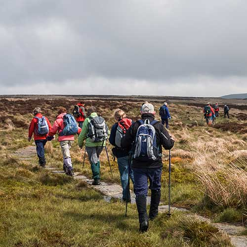A group of walkers crossing high grassy moorland