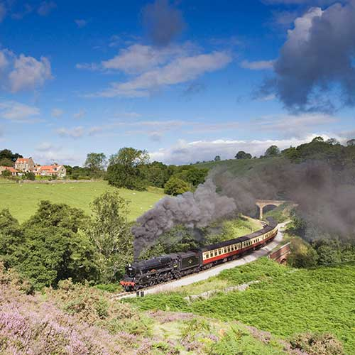 A steam train passing by tree lined grassy fields
