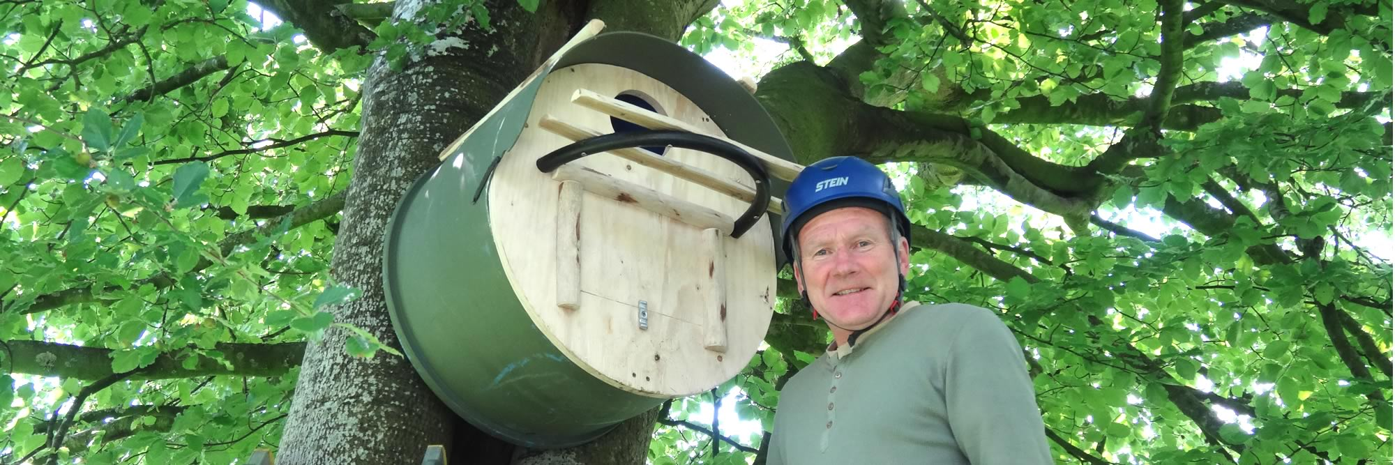 large owl box on a tree with a man in a hard hat