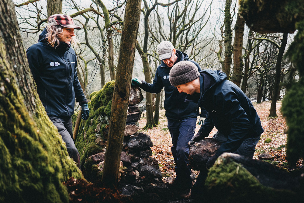 Rangers repairing a dry stone wall in a woodland