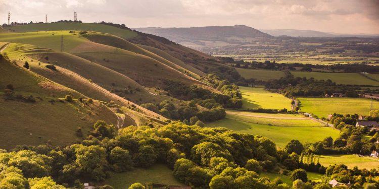 A sweeping hillside with green farm fields below